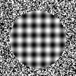 optical-illusions-24
