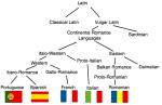latina_si_urmasii